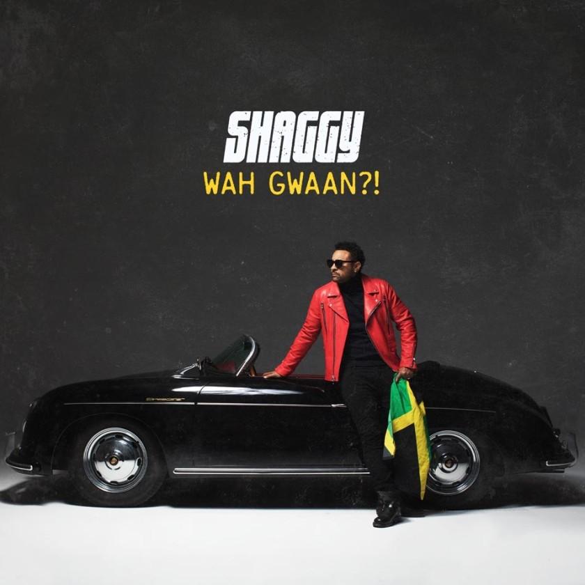 Shaggy - cover